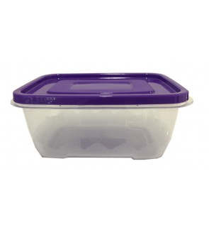 FOOD CONTAINER 1200 ML (Random Pick on colour)