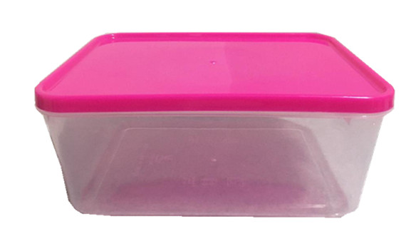 Plastic Food Container (RANDOM PICK ON COLOR)